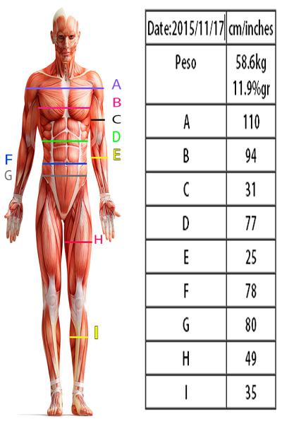 antropometria